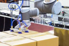机器人武器运输包装箱子对传动机线 免版税库存图片