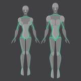 机器人男人和妇女、男性和女性靠机械装置维持生命的人,技术字符,从未来,机械镀铬物身体的平的类人动物, 库存照片