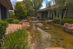 机器寿命、koi鱼和瀑布在一个池塘在南加州 免版税库存图片