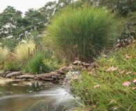 机器寿命和瀑布在池塘 库存照片