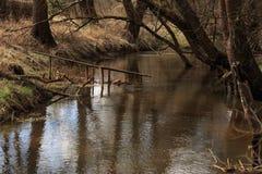 机器寿命春天一条小小河的风景和树 免版税库存图片