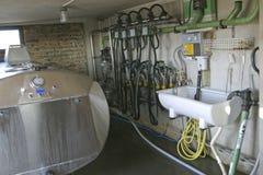 机器挤奶吸 免版税库存图片
