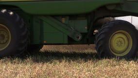 机器收获成熟干豌豆在农田增长 股票录像