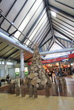 机场国际收割siem 免版税库存图片