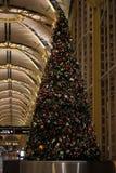 机场圣诞树 库存照片