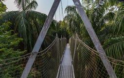 机盖走道如被看见在Lekki保护中心在Lekki,拉各斯尼日利亚 库存照片