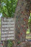 杀害树,杀害领域,柬埔寨 免版税图库摄影