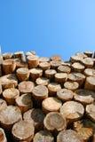 杂乱的一团木头 免版税库存图片