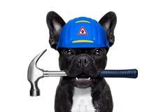 杂物工锤子狗 库存照片