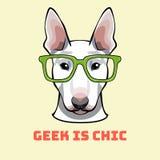 杂种犬怪杰 在聪明的玻璃的狗 减速火箭的纵向 也corel凹道例证向量 库存例证