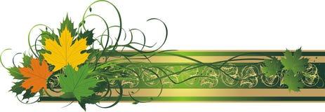 杂色横幅装饰叶子的槭树 免版税库存图片