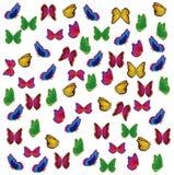 杂色蝴蝶的昆虫 免版税库存照片