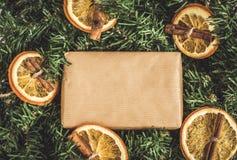 杉木分支,工艺礼物,干桔子,桂香, E-F的instagram 库存照片