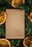 杉木分支,工艺礼物,干桔子,桂香 免版税库存图片