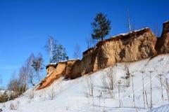 杉木和桦树在含沙峭壁在雪和蓝天背景在冬天在莫斯科地区 免版税库存照片