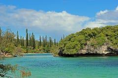 杉木小岛,新喀里多尼亚,南太平洋 免版税库存照片