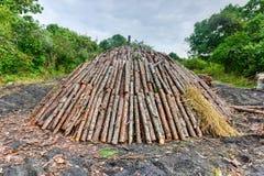杉木日志木火葬用的柴堆  免版税库存图片