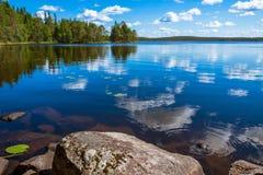 杉木森林反射在湖 免版税库存照片