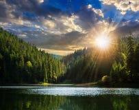 杉木森林和湖在清早山附近在s 免版税库存图片