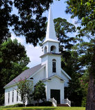 杉木的教会 库存照片