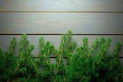 杉木肢体和木头 免版税库存照片