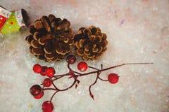 杉木锥体、樱桃和圣诞节薄脆饼干在雪 免版税库存图片