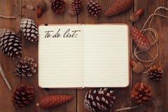 杉木锥体和开放笔记本有文本的:做名单 免版税库存照片