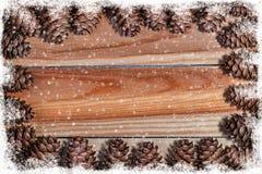 杉木锥体框架与雪花的 库存图片