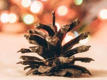 杉木锥体的细节和圣诞灯在背景中 图库摄影