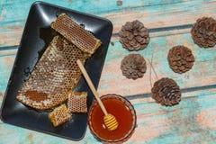 杉木马尔马里斯港蜂蜜 免版税库存图片