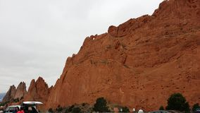 杉树和有些岩石 免版税库存照片