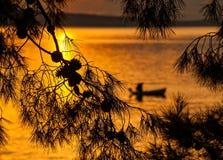 杉树和渔夫剪影在日落 免版税库存图片