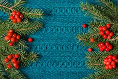 杉树和荚莲属的植物红色莓果作为框架的在被编织的毛线衣背景 圣诞节概念 平的位置 免版税库存图片