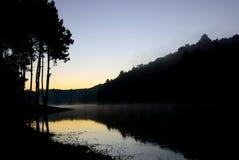 杉树在有一个湖的森林里前景的 在日出时间的图片 免版税图库摄影