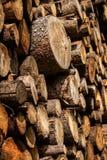 杉树林业开发 树桩和日志 过开发导致危及环境的砍伐森林 库存照片