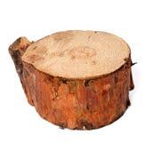 杉树树桩  免版税库存图片