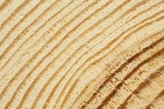 杉树纹理特写镜头以抓痕 免版税库存图片