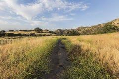 洛杉矶圣费尔南多谷早晨草甸 免版税库存照片