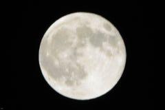 从洛杉矶的满月 图库摄影