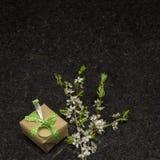 李子开花在古色古香的布朗花岗岩counte的分支和礼物盒 库存图片