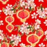 李子开花,红色纸灯分支  中国新的模式无缝的年 水彩 库存照片