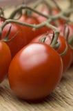 李子成熟的蕃茄藤 库存照片