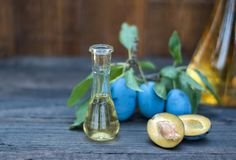 李子白兰地酒或任何烈酒用新鲜和鲜美李子果子 免版税库存照片