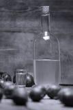 李子白兰地酒,瓶Rakija 图库摄影
