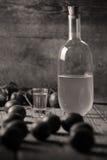 李子白兰地酒,瓶Rakija 免版税图库摄影