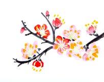 绘李子的开花中国花 库存图片