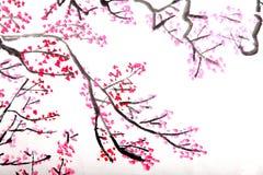 绘李子的开花中国花 免版税库存图片