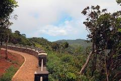 李仙江公园峡谷的观察台  毛里求斯 免版税库存照片