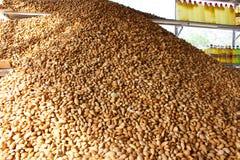 杏仁在一个市场上在伊朗 免版税库存图片
