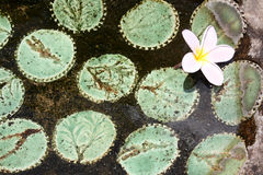 杏仁奶油饼 免版税图库摄影